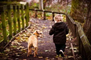 חיות מחמד -- לבריאות הנפש